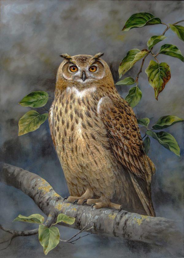 Eagle Owl - Gufo Reale