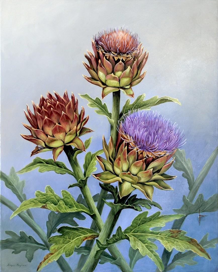 Artichoke flowers - Fiori di Carciofo